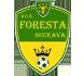 Foresta Suceava